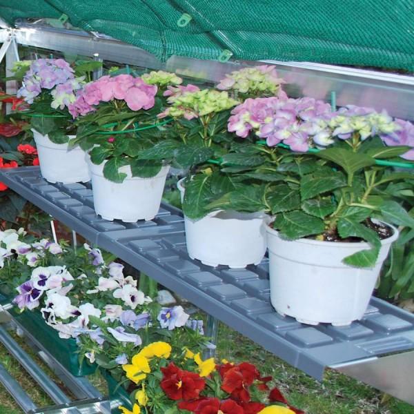 Palram Greenhouse Shelf Kit