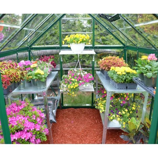 Harmony 6`x 6` - Green Greenhouse