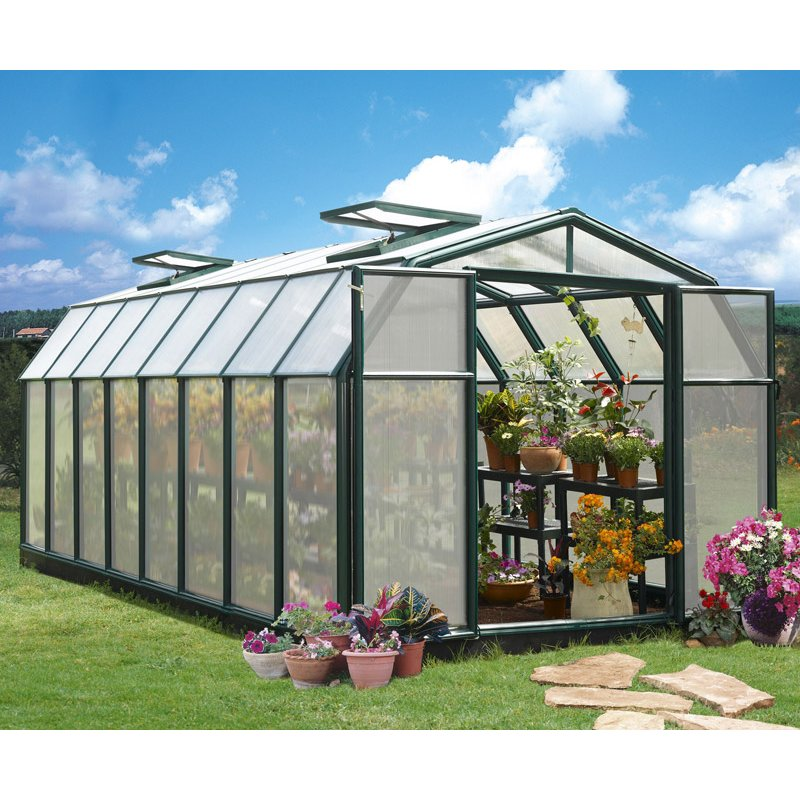 Greenhouse Hobby Gardener 8′ x 16′ Green