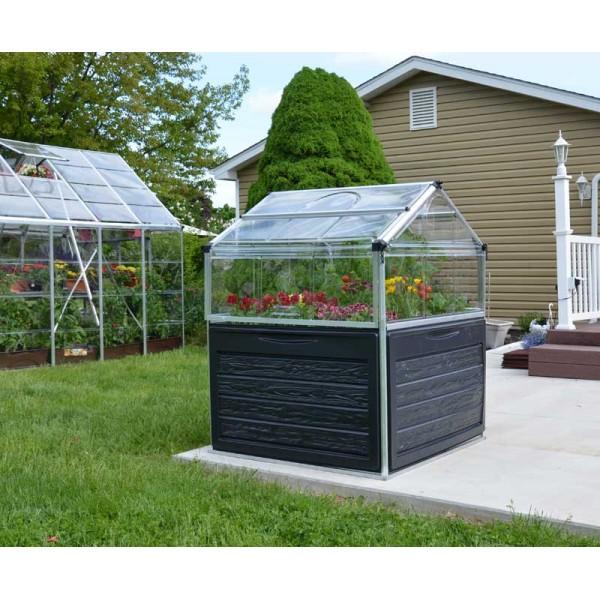 Plant Inn - Clear