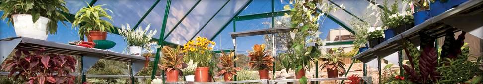 Palram Balance Greenhouse Shed