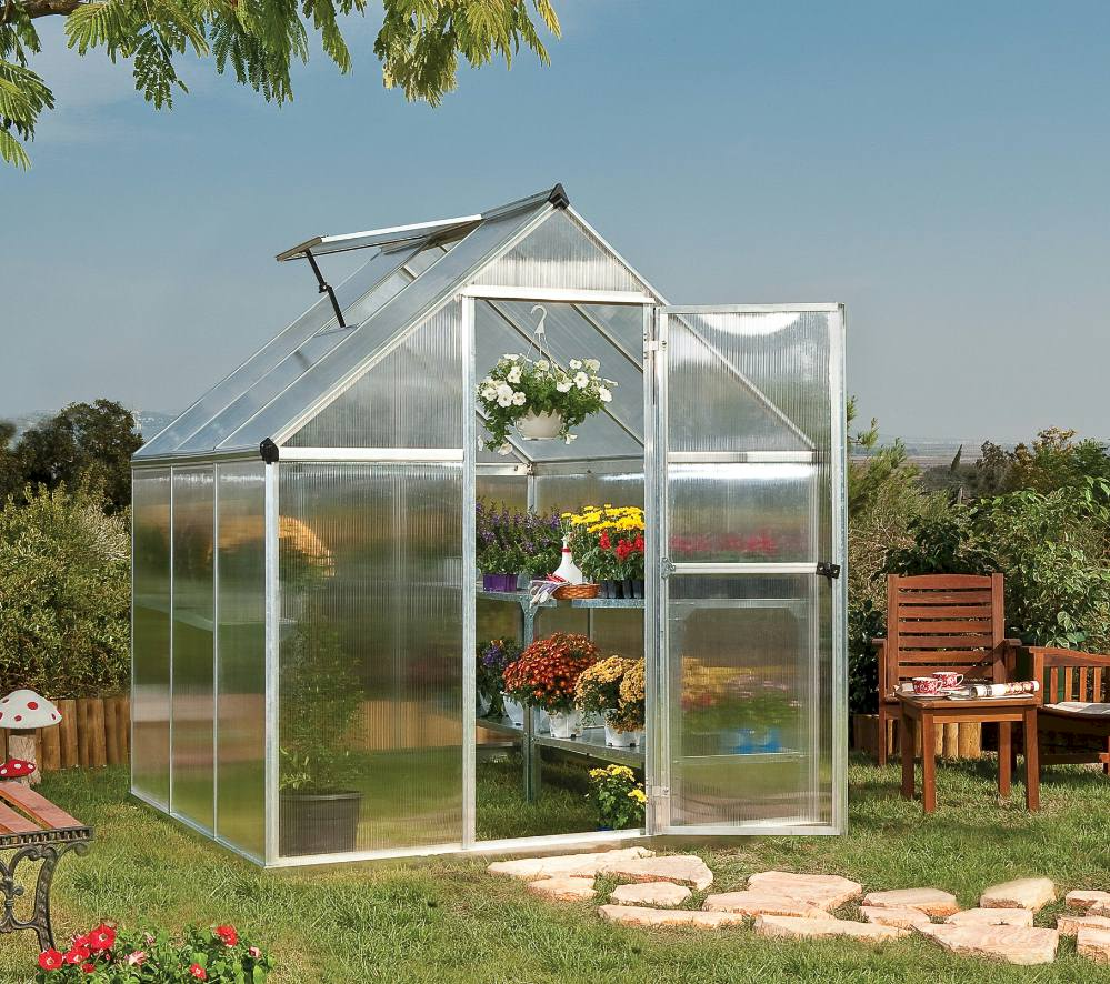 6x10 polycarbonate greenhouse with a roof vent and swing door